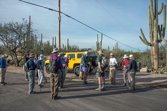 Gathering before the hike at Suzenu Avenue