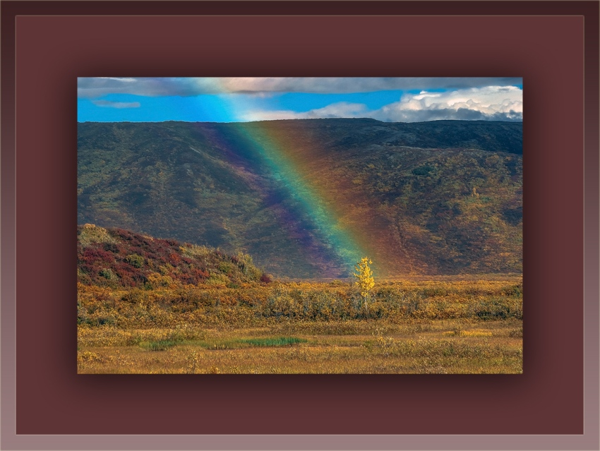 Rainbow (1 of 1)-4 blog