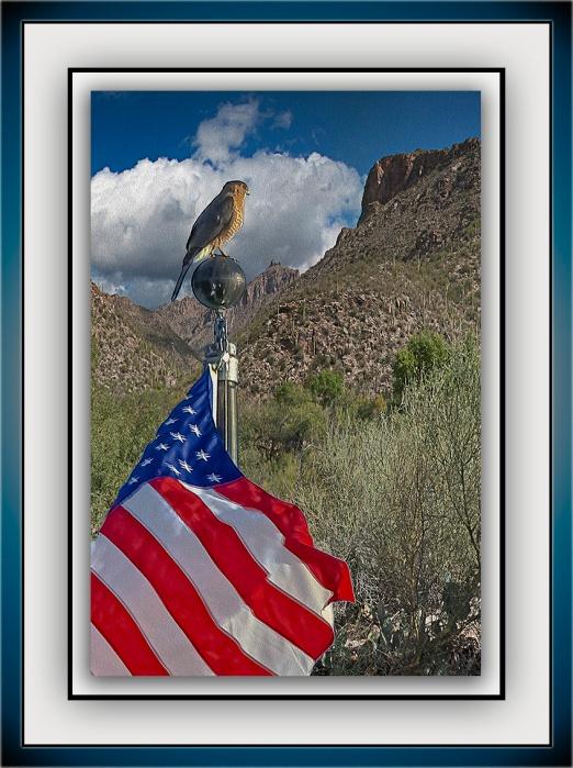 Sabino Canyon Clouds_Coopers Hawk blog