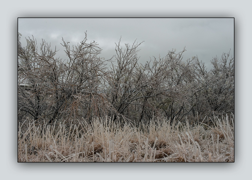 Freezing Rain 2015 01 02_0427_blog