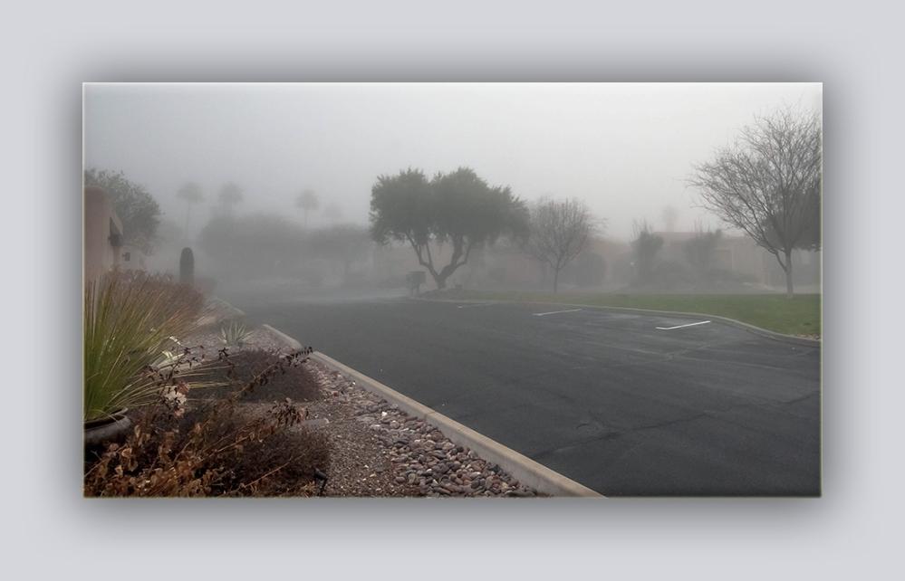 Front Fog (1 of 1) blog
