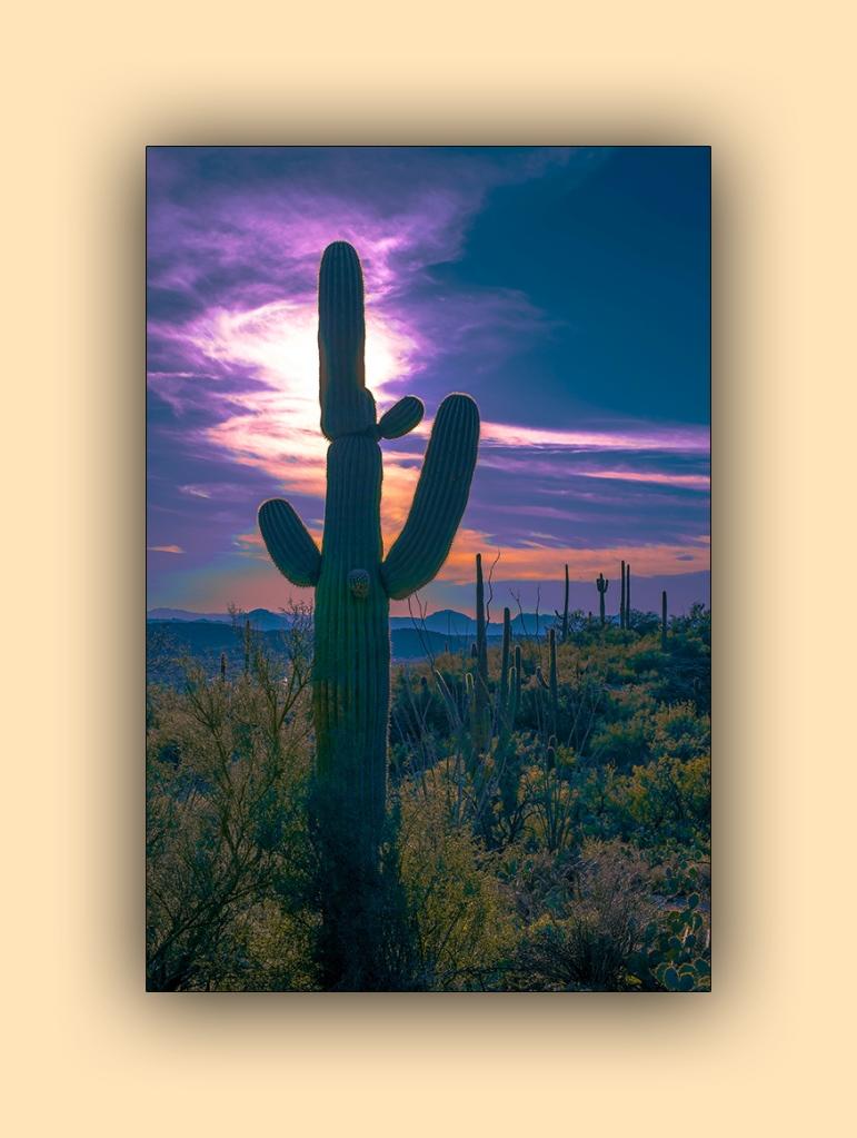 Blackett's Sunset (1 of 1) blog
