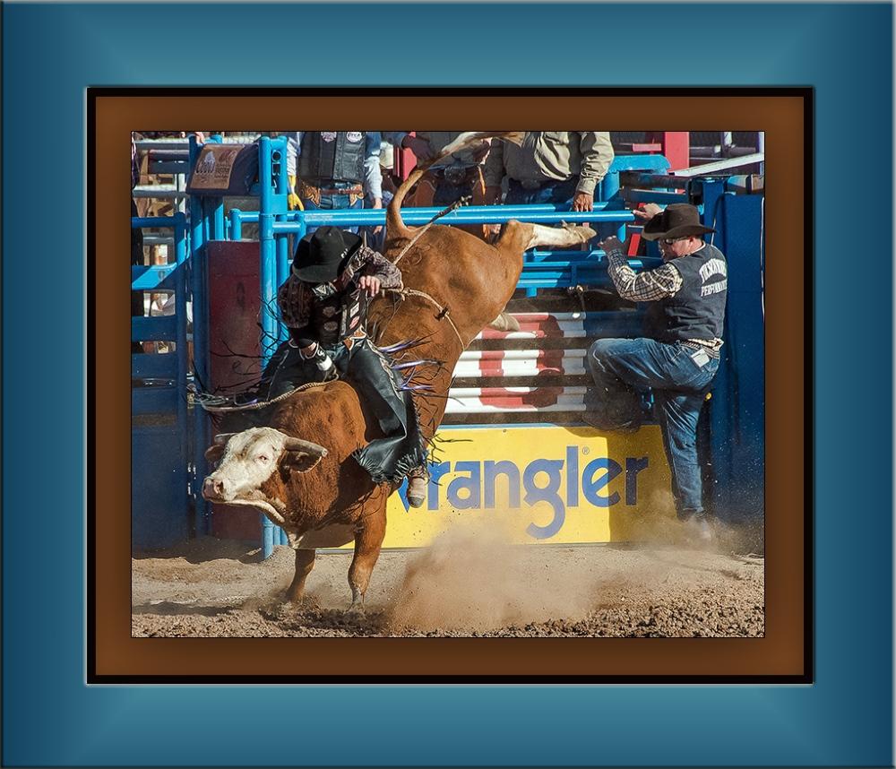 Bull Riding-0380-2 blog