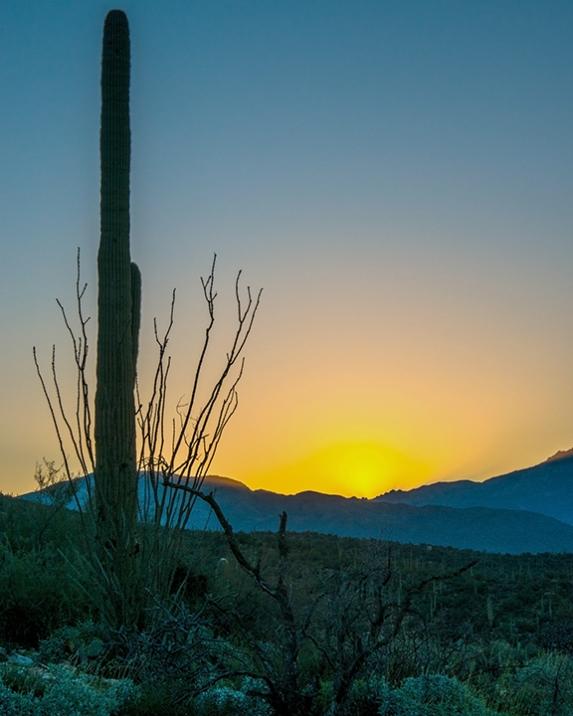 Sunrise (1 of 1)-4 blog