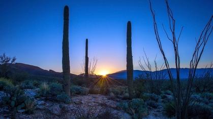 Sunrise (1 of 1)-6 blog