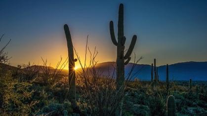 Sunrise (1 of 1)-7 blog