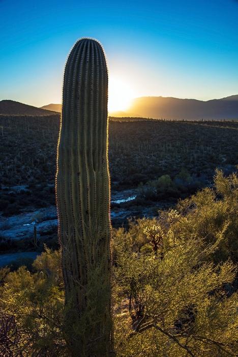 Sunrise (1 of 1)-9 blog