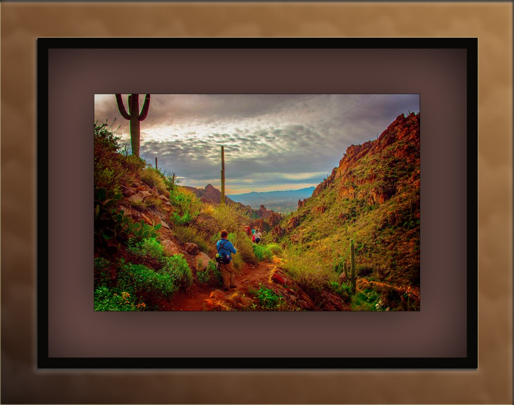Ventana Canyon (1 of 1)-2 Art blog