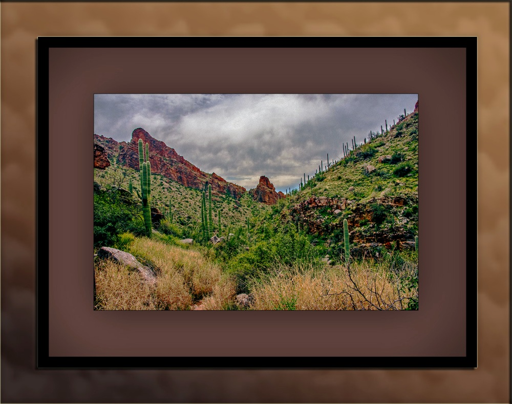 Ventana Canyon (1 of 1)_Art blog