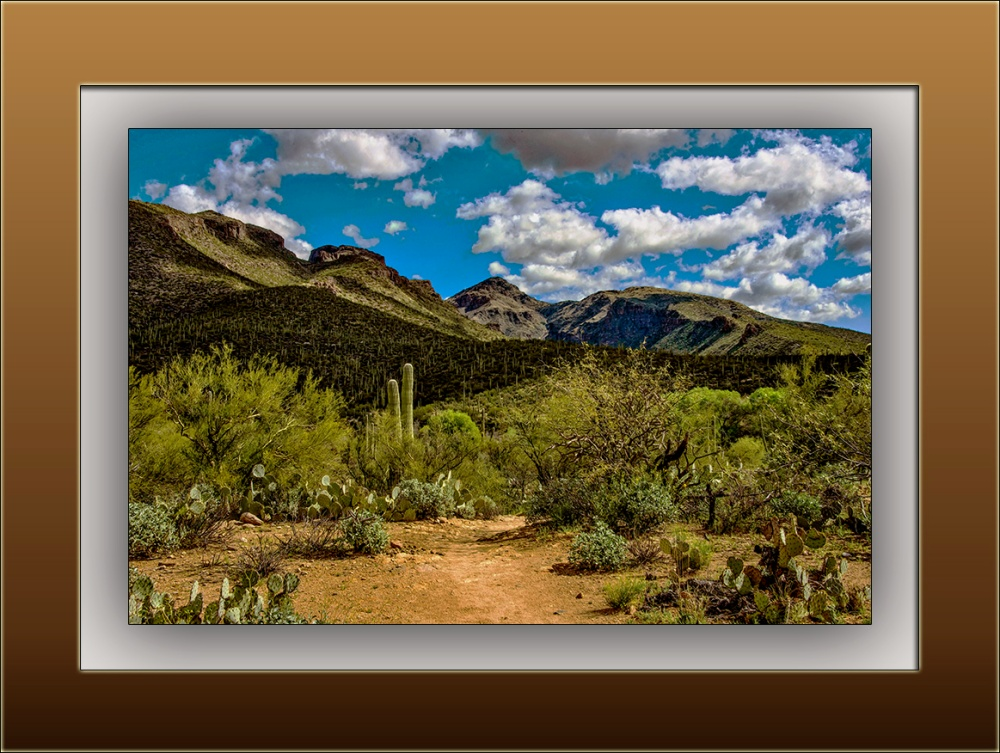 landscape (1 of 1)_bear canyon trail blog
