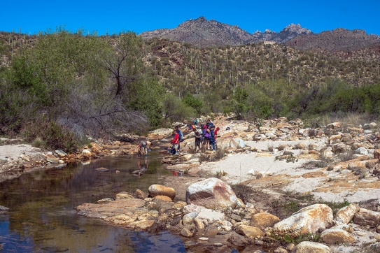 4th Grade Students Panning Sabino Creek in Sabino Canyon