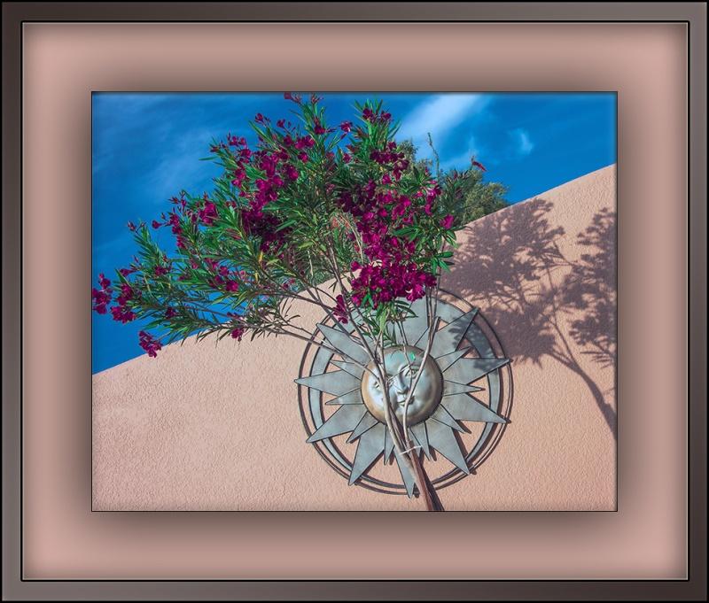 Oleander (1 of 1)-2 blog