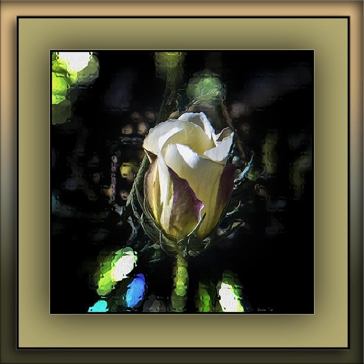 Wildflower (1 of 1)-2 art blog