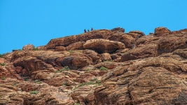 Red Rock Canyon (1 of 1)-9 blog