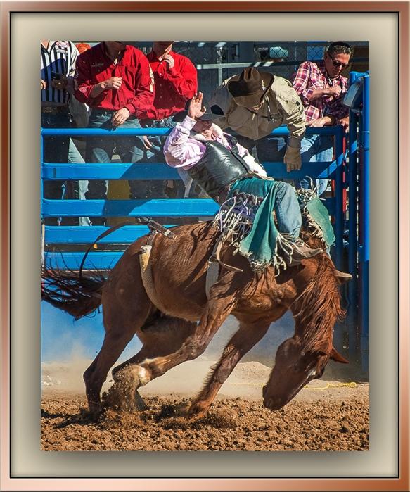 Tucson Rodeo 2014-0172_blog
