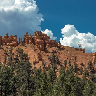 Bryce Canyon (1 of 1)-10 blog