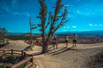 Bryce Canyon (1 of 1)-4 blog