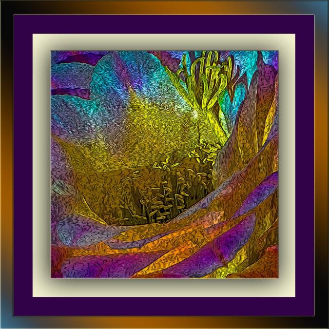 Cactus Blossom Close-up (1 of 1) art blog