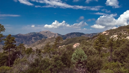 View Toward Cathedral Rock