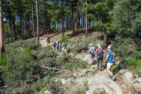Hikers on Box Camp Trail