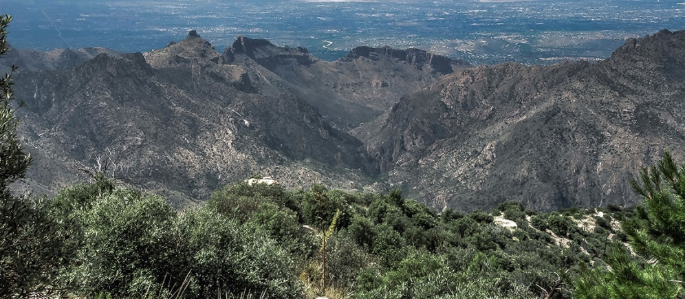 View Down Through Sabino Canyon