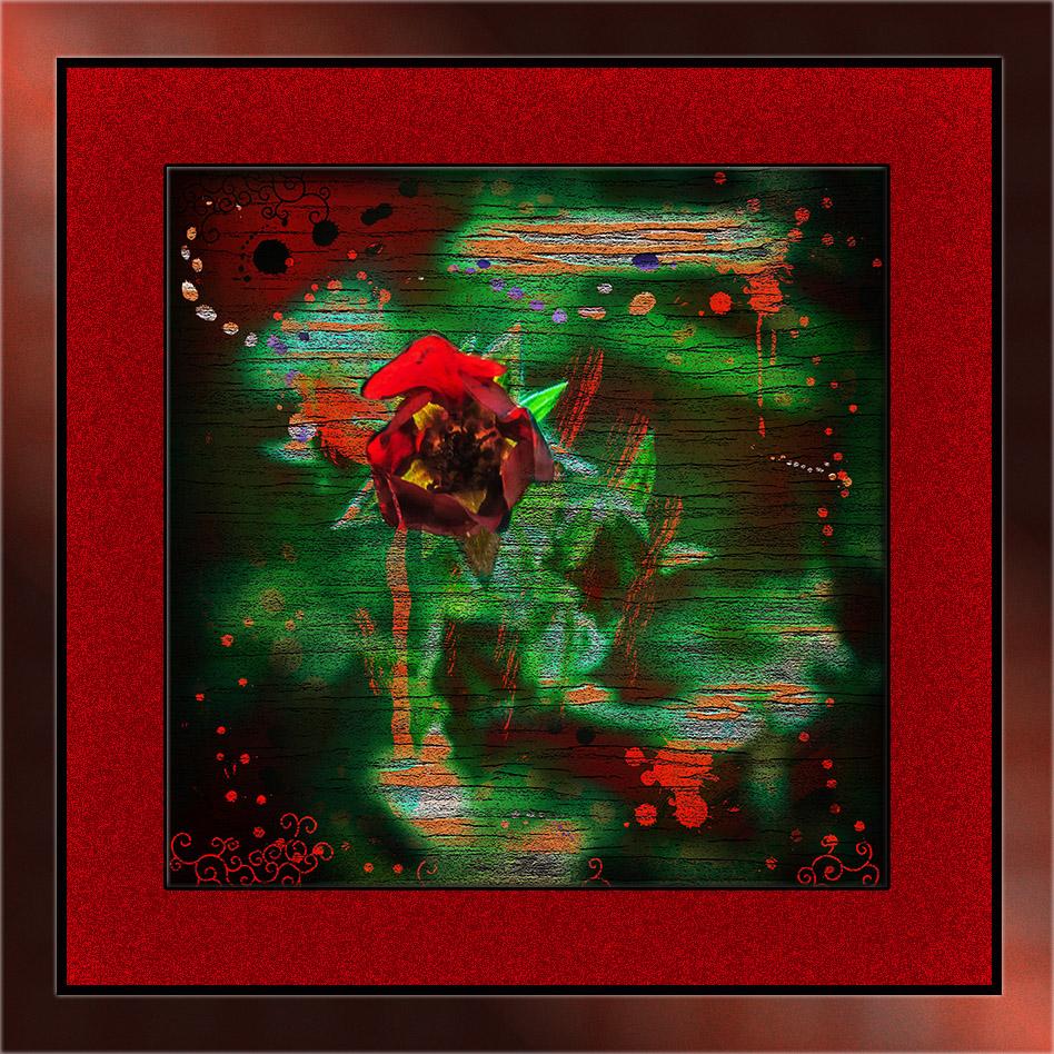 Thurber Cinquefoil (1 of 1) Art blog