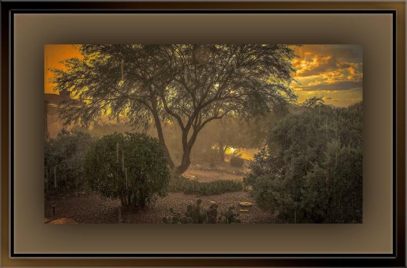 Desert Shawer (1 of 1)_edit blog