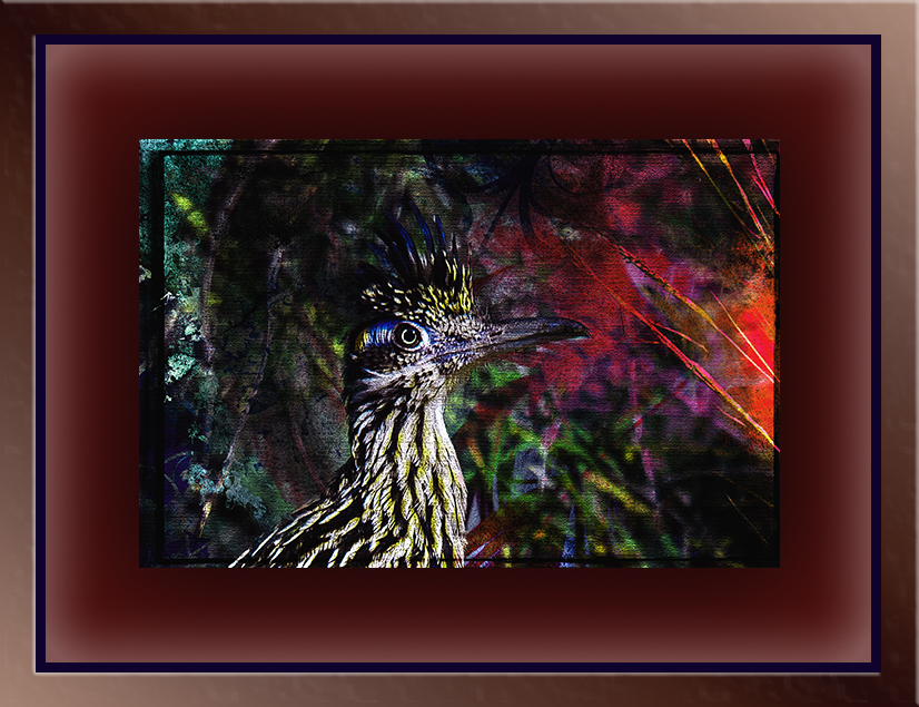 Greater Roadrunner (1 of 1)-3-grunge art blog II