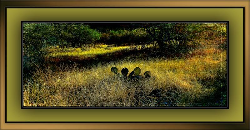 Grunge Desert Landscape (1 of 1)-2 blog