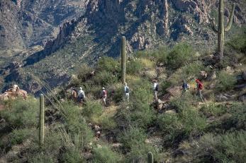 Phone Line Trail