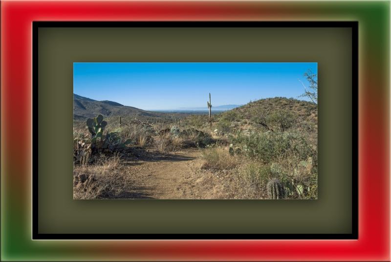 Carillo Trail (1 of 1)_edited-1 blog