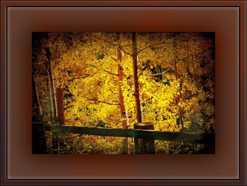 Fall Colors (1 of 1)-4 art blog