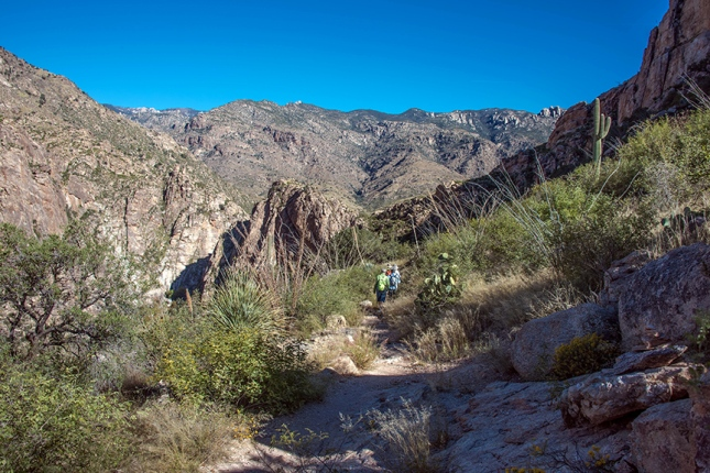 Upper Sabino Canyon