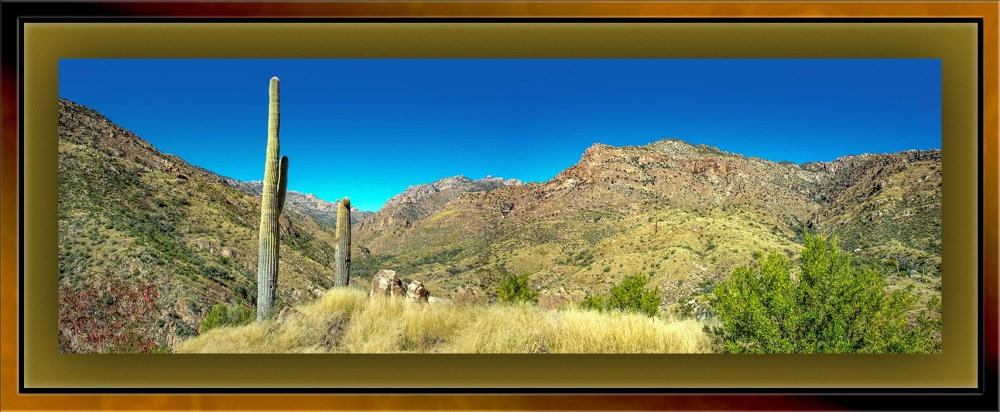 Panorama Sabino Canyon Trail(1 of 1) blog