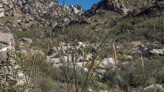 Pima Canyon Trail