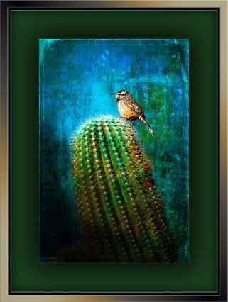Cactus Wren (1 of 1)-3 grunge art blog