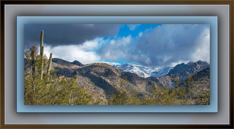 Looking Up Through Sabino Canyon (1 of 1) blog II
