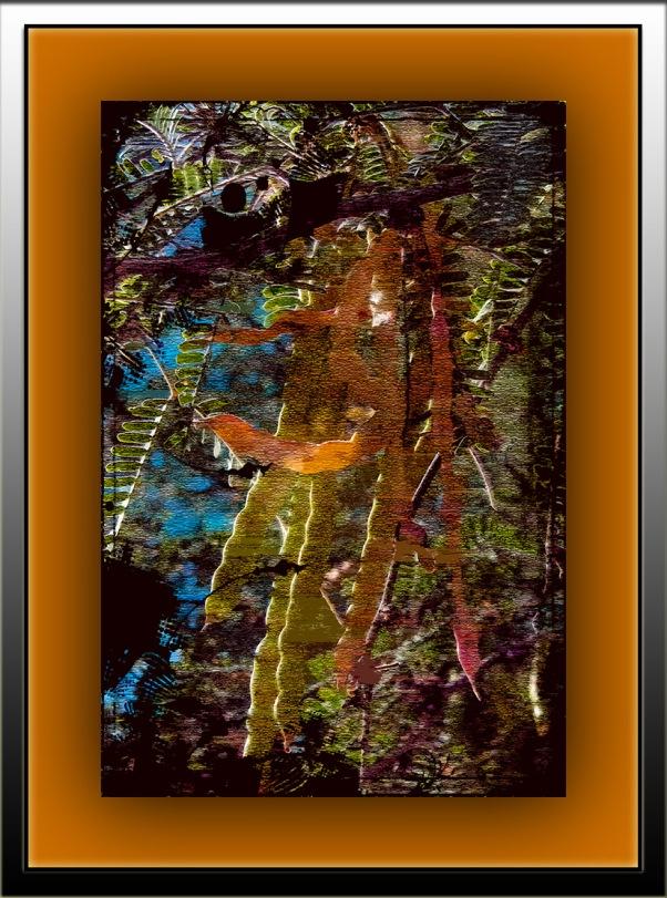Mesquite pods (1 of 1)-Art blog