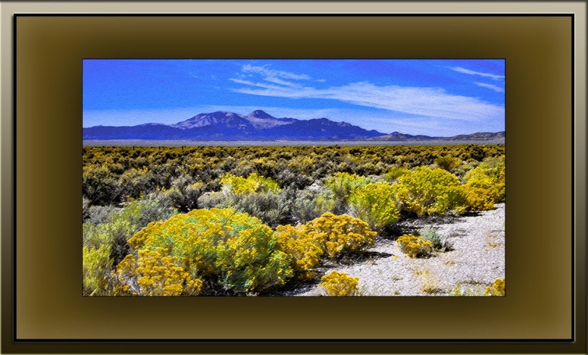 Sagebrush (1 of 1)-2 art blog