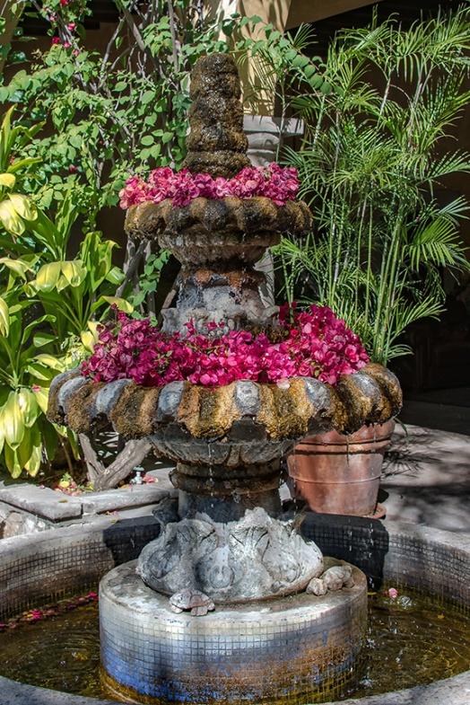 Flowers (1 of 1)-4 blog