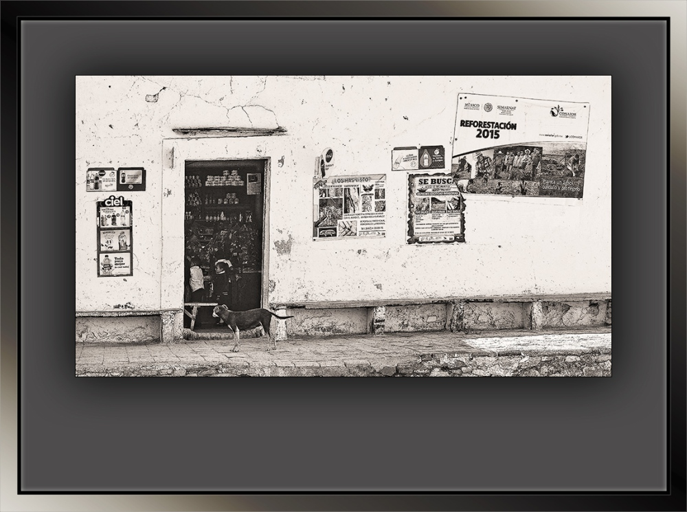 Mexican Village Store B&W (1 of 1)-2 zoom blog
