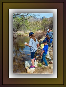 Creek Critters (1 of 1)-2 blog