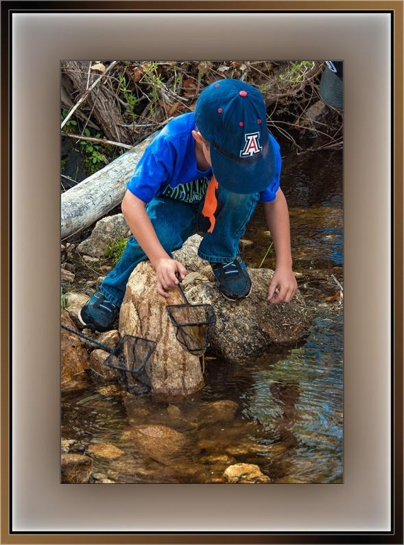 Creek Critters (1 of 1) blog