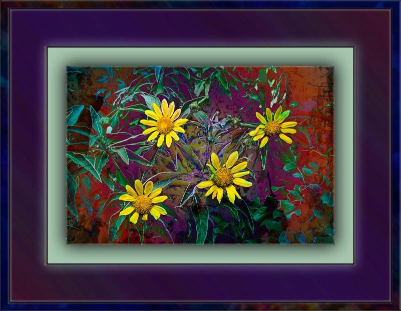 Desert Museum-9812 Brittle Bush Art blog