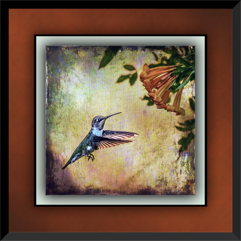 Flowers and Hummingbirds 11-02-13-8668 grunge Art blog