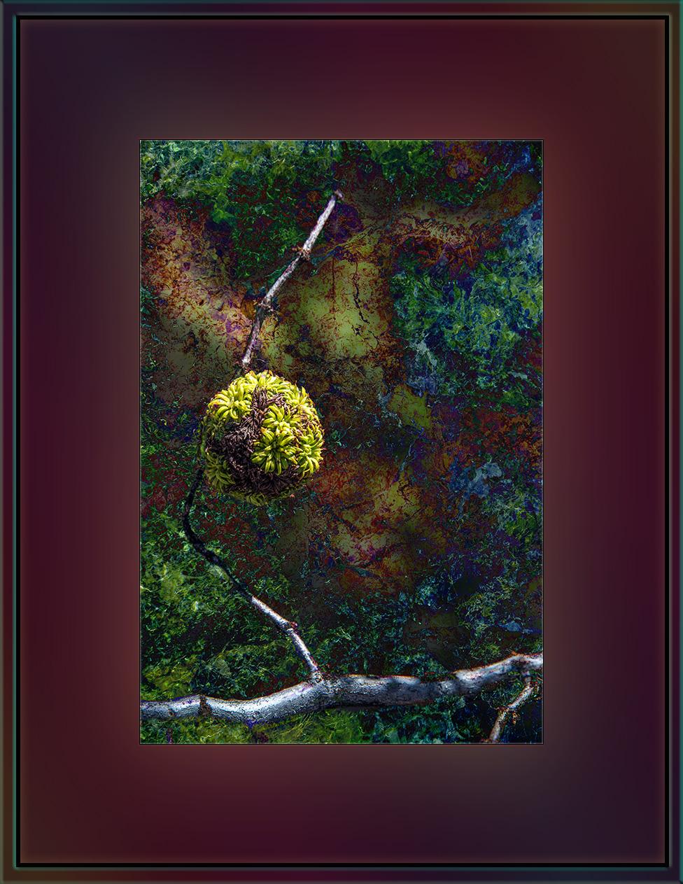Gall Art (1 of 1) blog