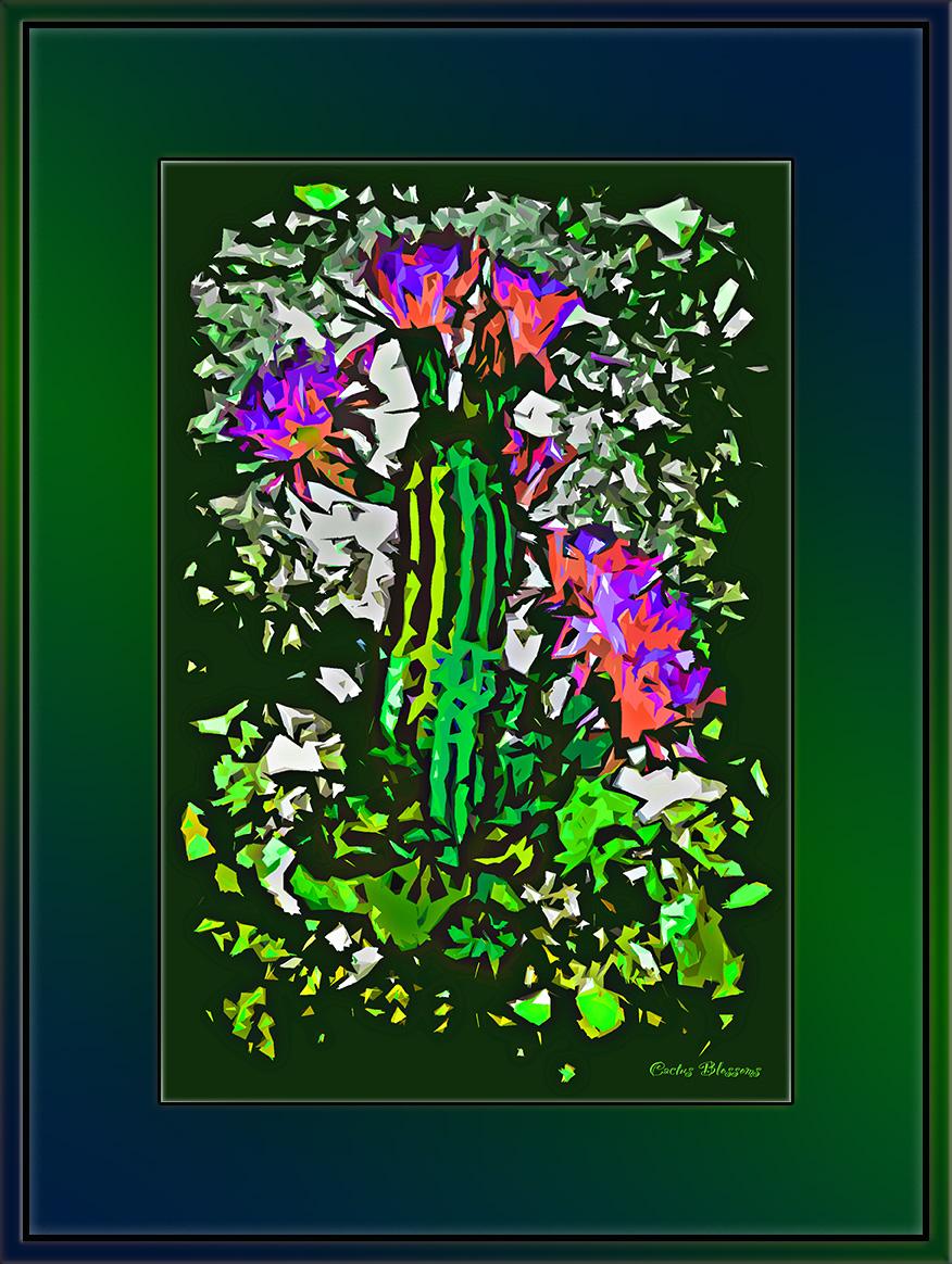 Cactus Blossoms 2011  13434 - 2011-05-21