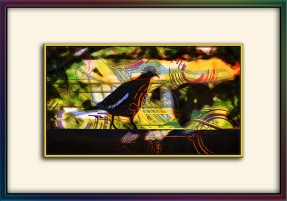 White-winged Dove Abstract Art(1 of 1) blog-9