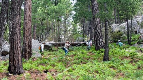 Hiking group (1 of 1)-14 blog
