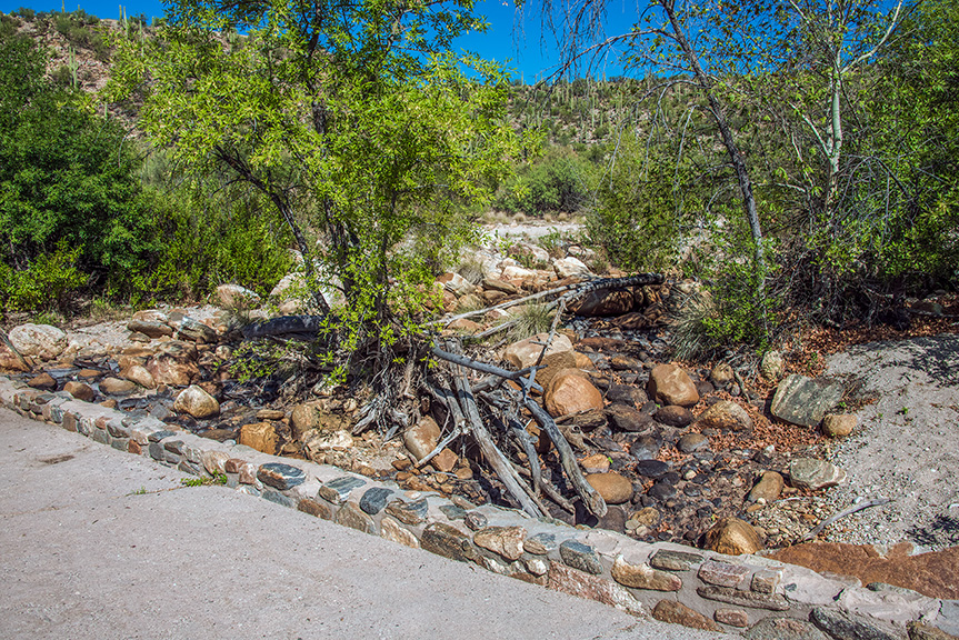 Sabino Creek (1 of 1)-3 blog